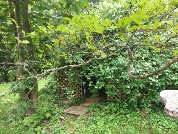 Entrez, c'est une cabane végétale