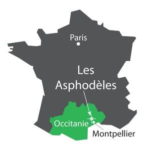 Carte Asphodèles