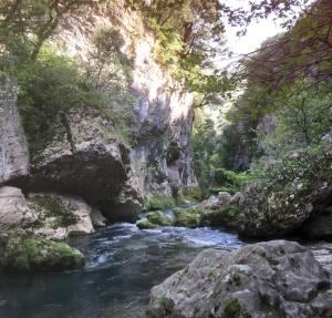 Upper Vis river by the lodge Les Asphodèles